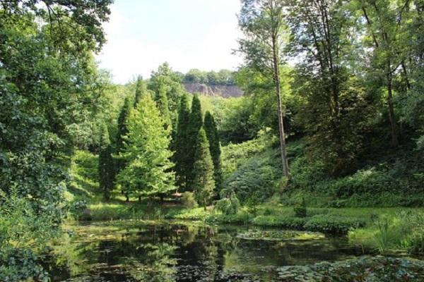 Nature & Parks in Bonn